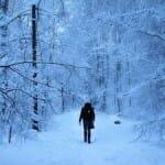 フィンランド、ネット接続を「国民の基本的権利」に