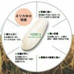 アフリカの飢餓を救う米:ネリカ(NERICA)