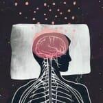 Jeff Iliff : よく眠る事が大切なもう一つの理由(TEDMED)