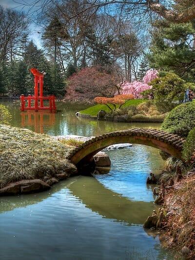 ブルックリン植物園の日本庭園 / Wikipedia