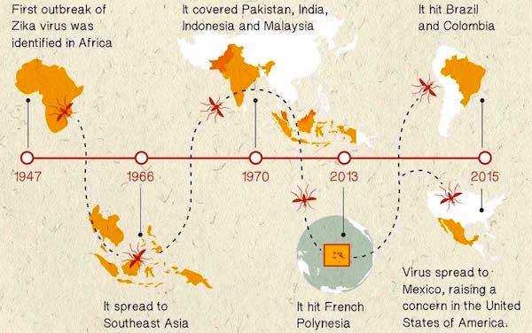 Zika Virus - Infographic / DaSantosh