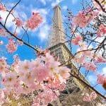 フランス経由、新しい私(フランス観光開発機構)