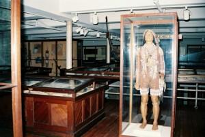 harvard-museum-1