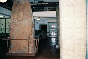 harvard-museum-2